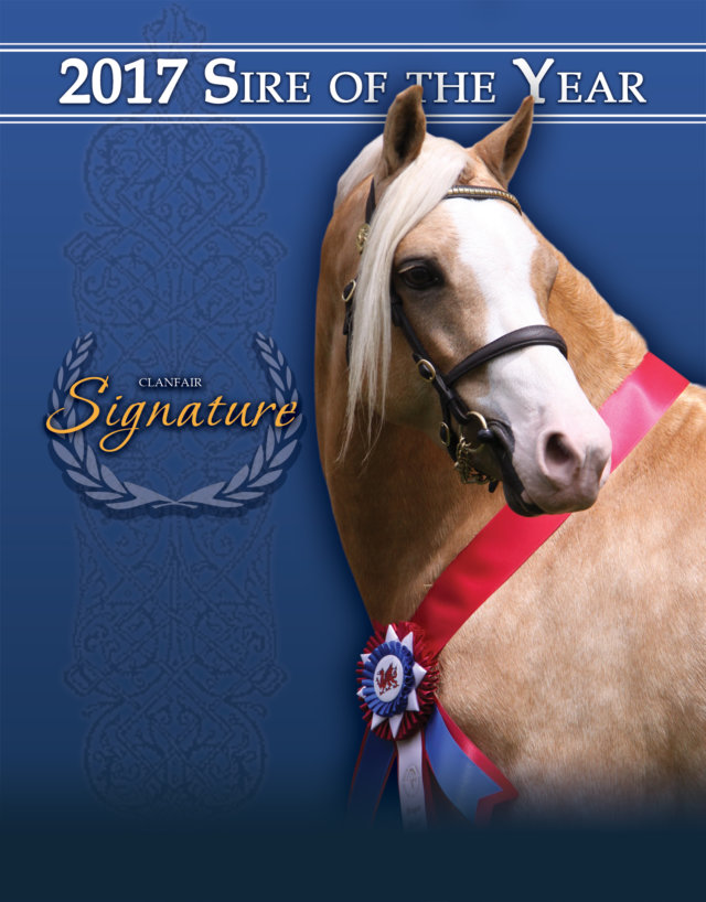 121917-Sire-of-the-Year-Ad-web